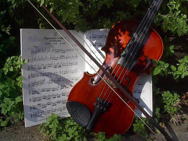 Violin by cursedcookie