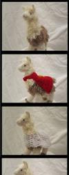 Llamas IRL by jesspotter