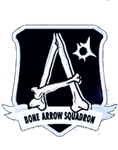 Bone Arrow Squadron Logo