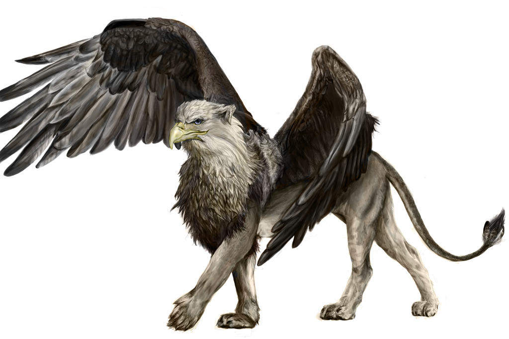 Griffin by cheesewarrior on deviantart - A picture of a griffin the creature ...