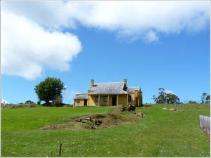 71. Yellow House