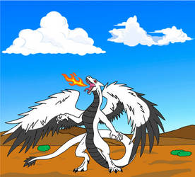 Noire Flash dragon form