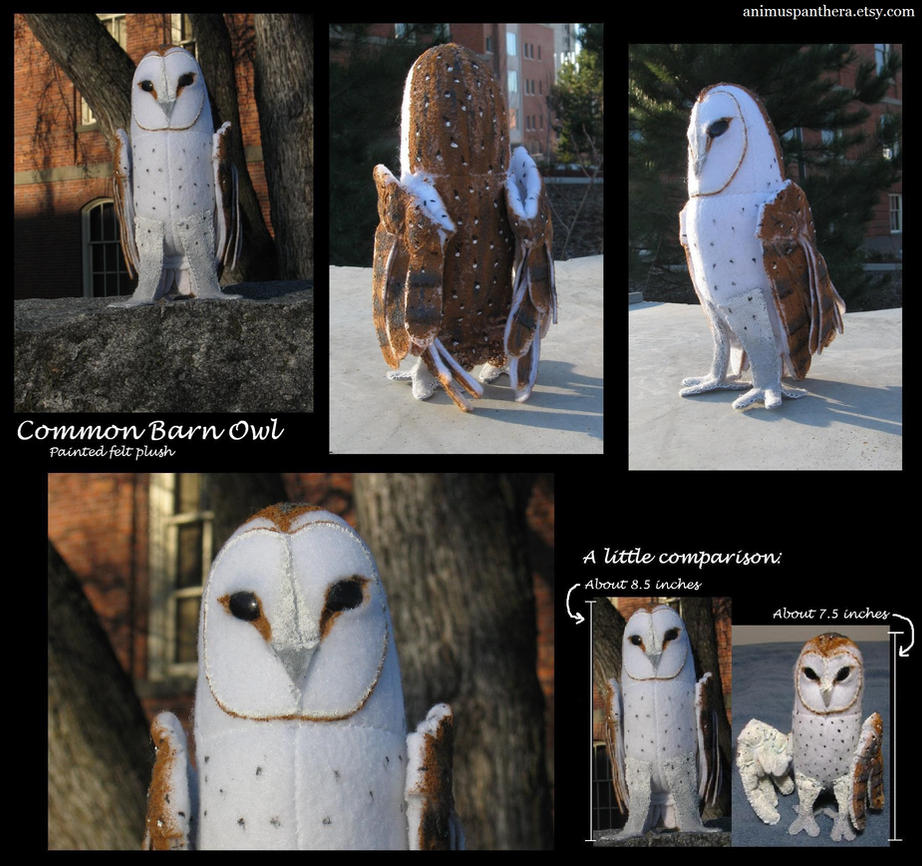Common Barn Owl plush v. 2.0 by Animus-Panthera