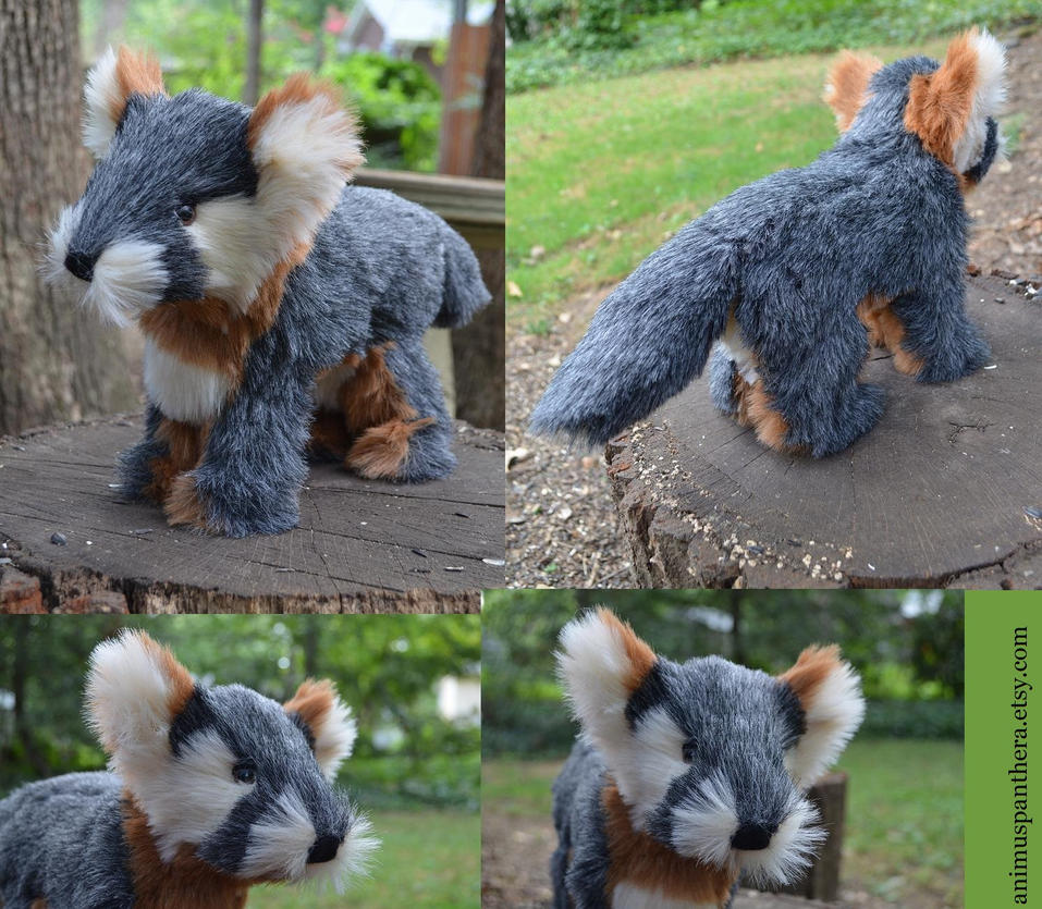 Commission: Gray Fox Kit by Animus-Panthera