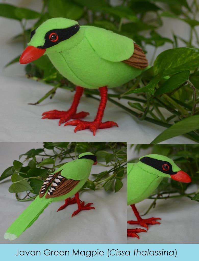 Javan Green Magpie by Animus-Panthera