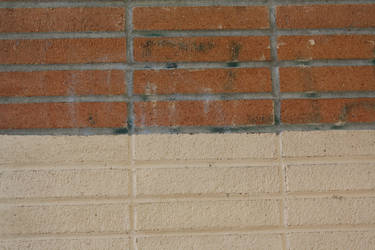 Stock: Brick Texture 2 by Pawkeet