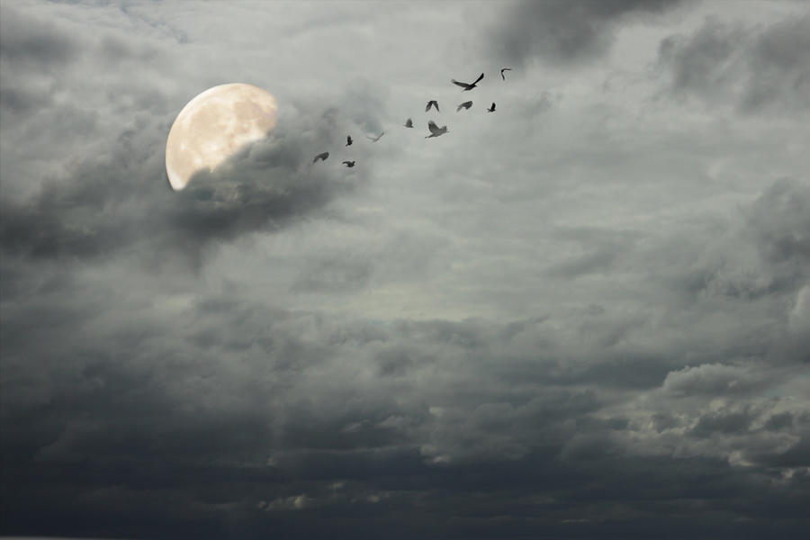 Stormy sky background by firesign24-7