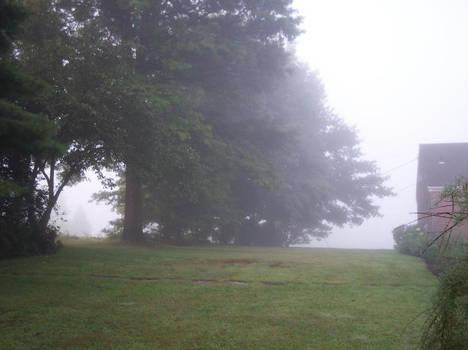 West Virginia Morning 2
