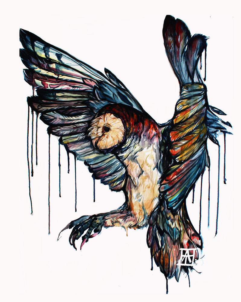 Watercolor barn owl