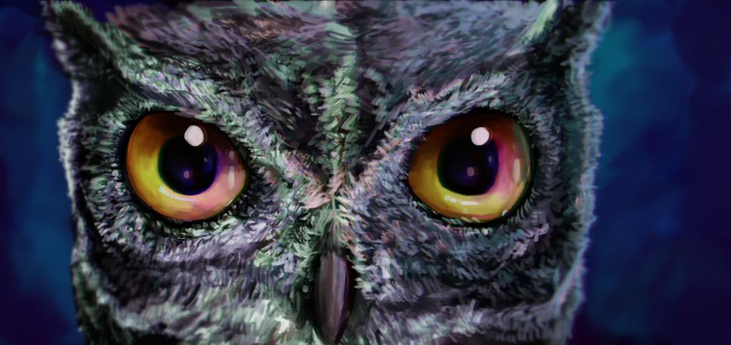 Eyes by arandomguy1221