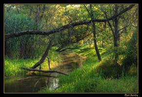 Beaver Canal Landscape by DanSandy