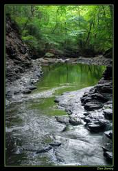 Emerald River by DanSandy