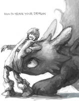 hiccup and toothless by sumi0060