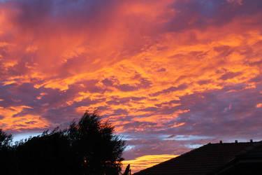 Morning Light by MysticSena