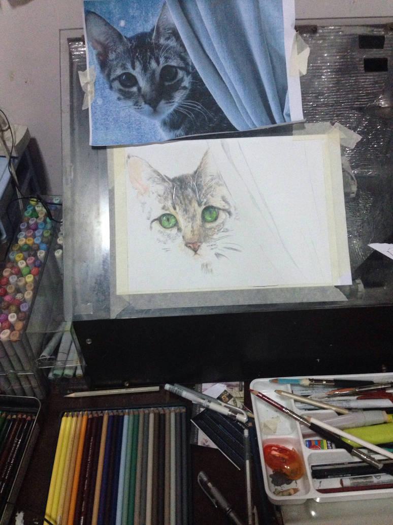 catwip by littlemissmarikit