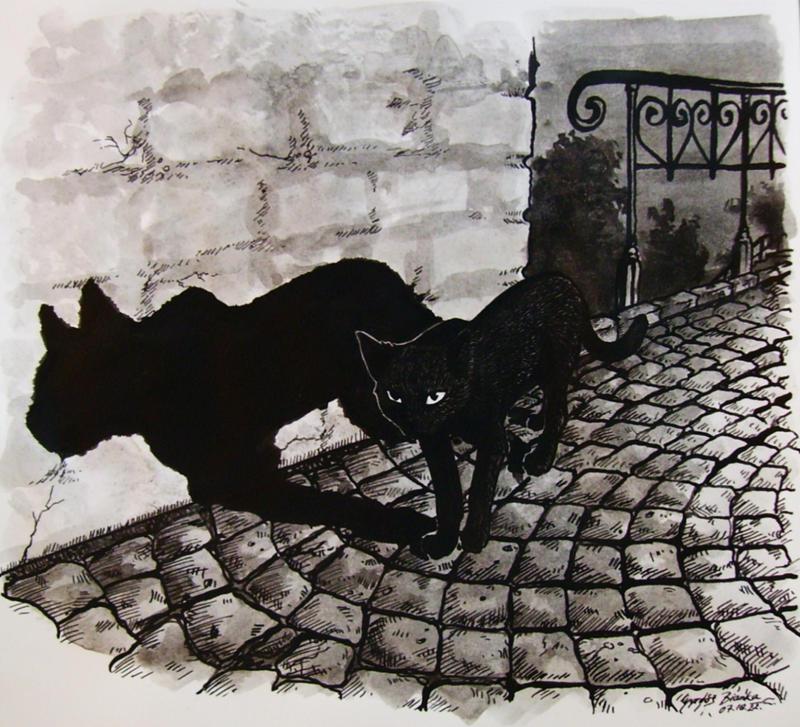 The shadow's shadow by KitsuneBara