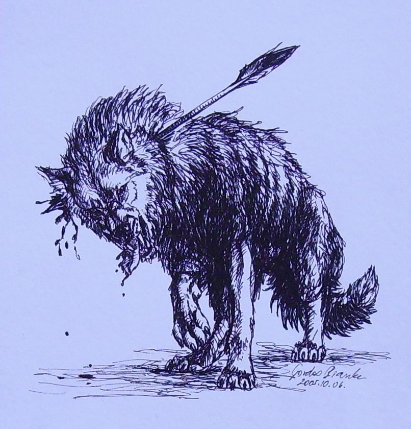Wolf with Arrow by KitsuneBara