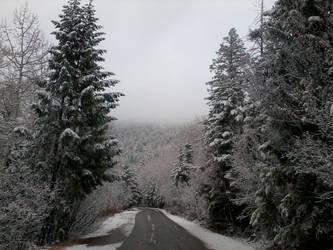 Snow by SarinBetch
