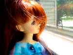 Looking Out the Window by Busgirl333