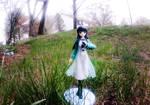 Miyuki Shiba in the Grass by Busgirl333