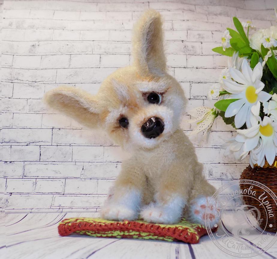 Corgi Puppy by ImeriBridzhet