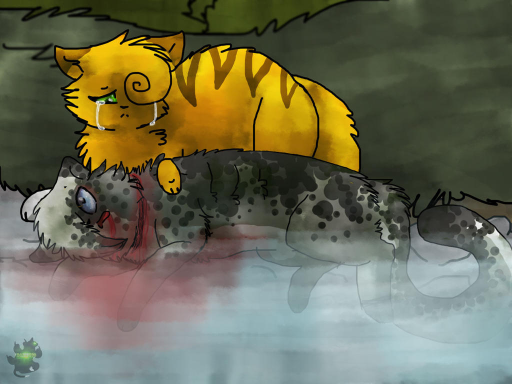 Ashfur's death(again) by danituco