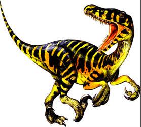 Raptor1