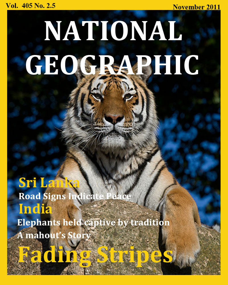 National Geographic- Fading Stripes Cover by K3RI1