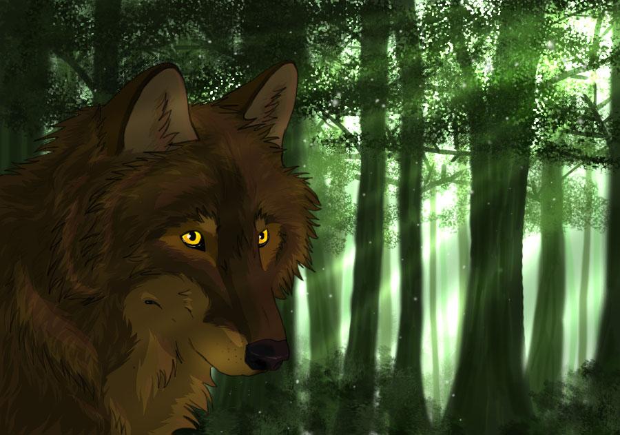 Pidiendo fotos ^^ Iberian_wolf_by_soccerlover37-d5r96e2