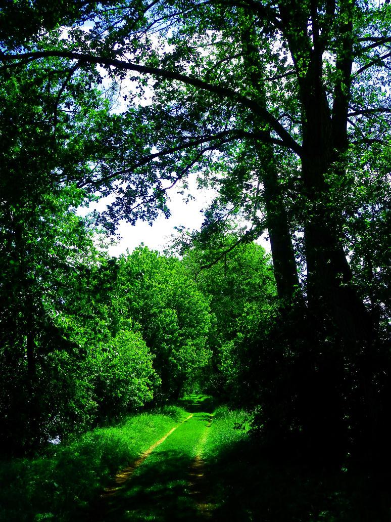 Green Way by Yaehara