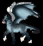 N3017 Padro Foal Design