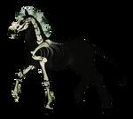 N3642 Padro Foal Design