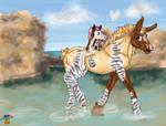 Pony-back Ride