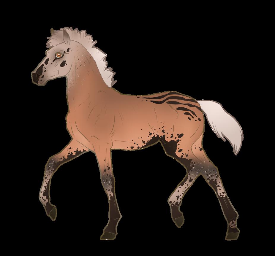 N7572 Padro Foal Design