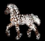 N7682 Padro Foal Design