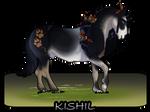 N8752 Kishil