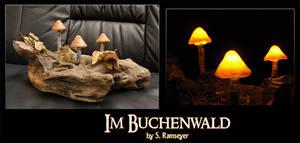 Im Buchenwald by Psydrache