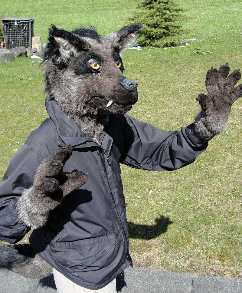 Partial Fursuit by Psydrache