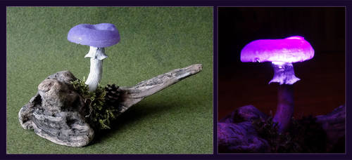 LED Mushroom Light 'Viola' by Psydrache