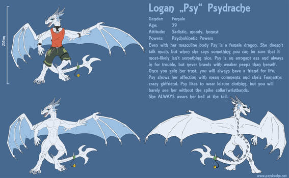 Psy Anthro Reference Sheet 2020