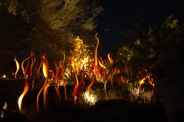Desert Fire by idontgivadam