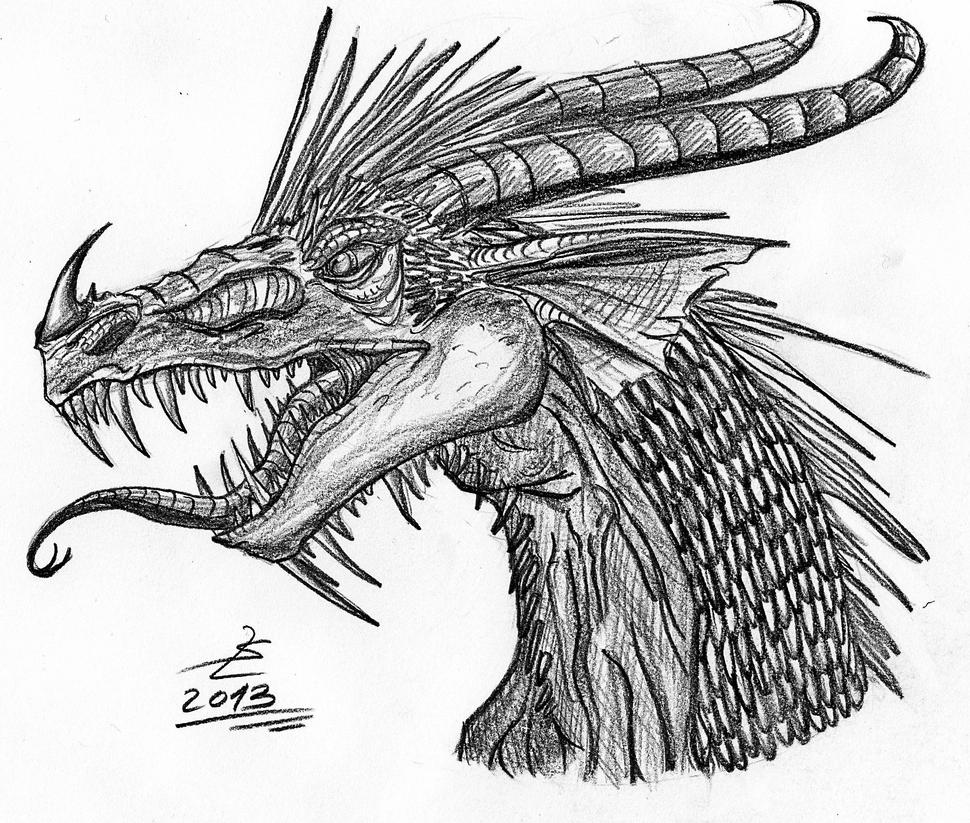 dragon head sketch by giantdragon on deviantart