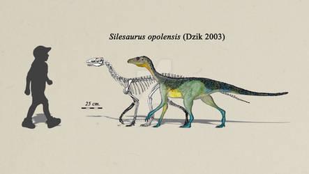 Silesaurus opolensis