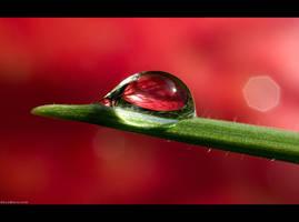 Just a Single Drop by KeldBach