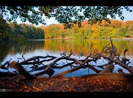 Autumn Lake by KeldBach