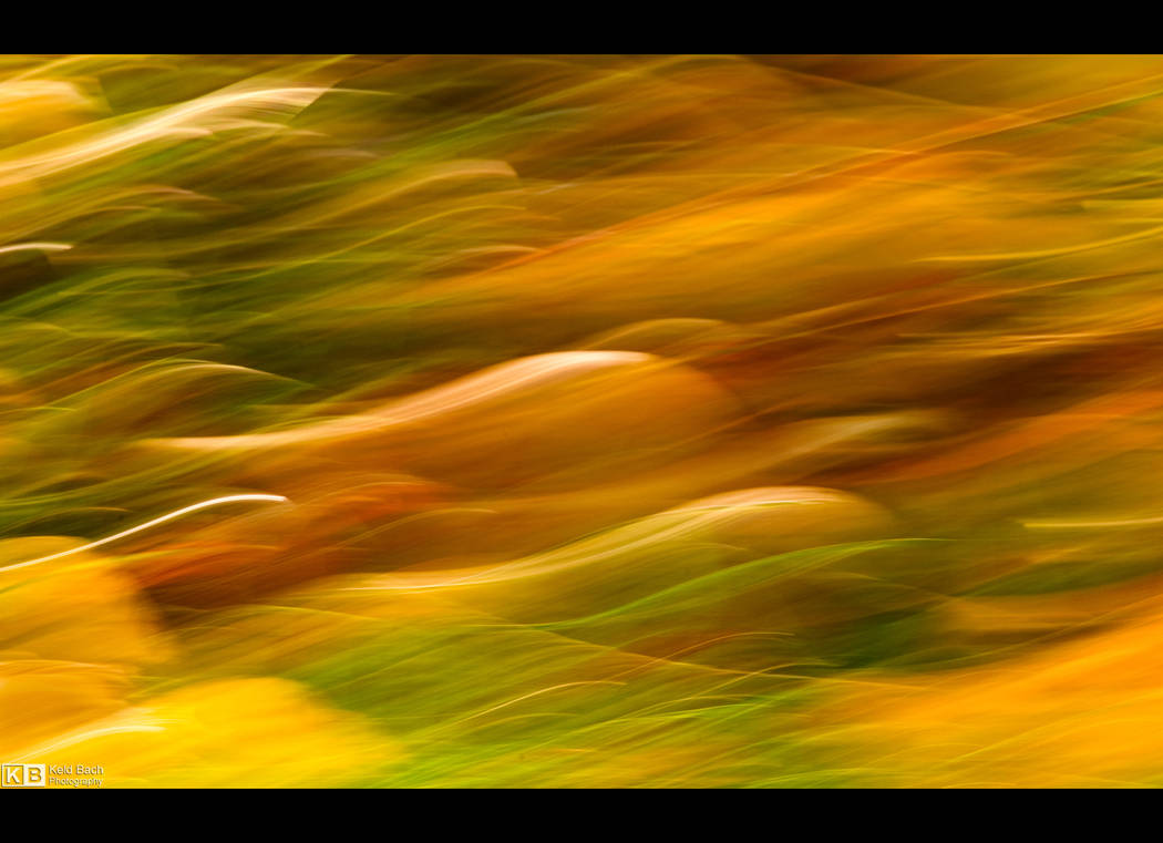 Autumnal Abstraction by KeldBach