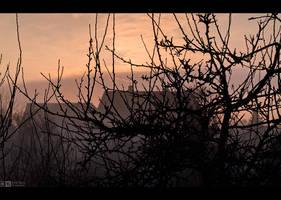 Misty Morning in March by KeldBach