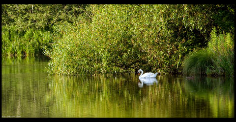 Evening Mood by the Lagoon by KeldBach