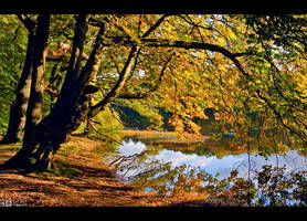 Autumn Mood by KeldBach