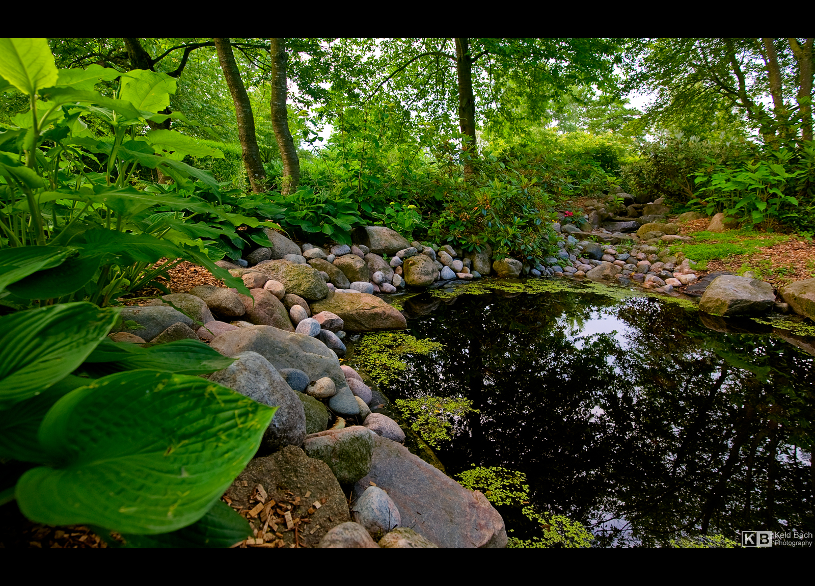 Little Pond by KeldBach